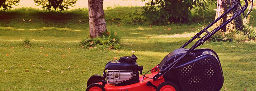 Which is the Best Battery Operated Lawn Mower?