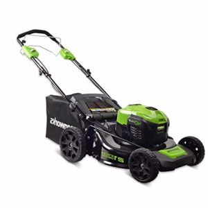 GreenWorks MO40L02 G-MAX 40V 21 Self-Propelled Dual Port Mower, Battery and Charger