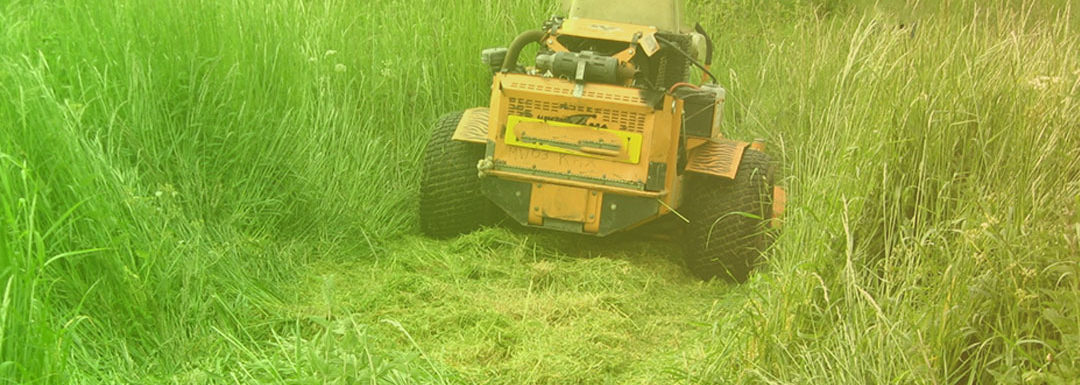 How to Mow Tall Grass with a Riding Lawn Mower in 10 Easy Steps